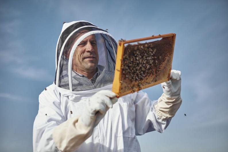 niall ringrose iput beekeepers7a9688 1