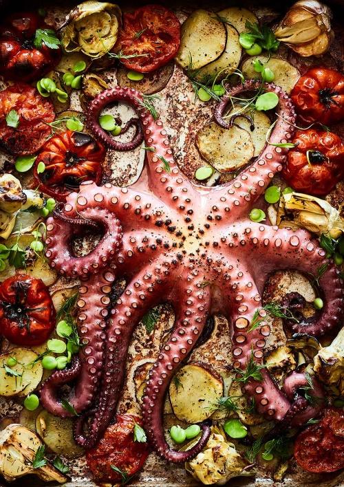 Mowie Kay Octopus Plaki