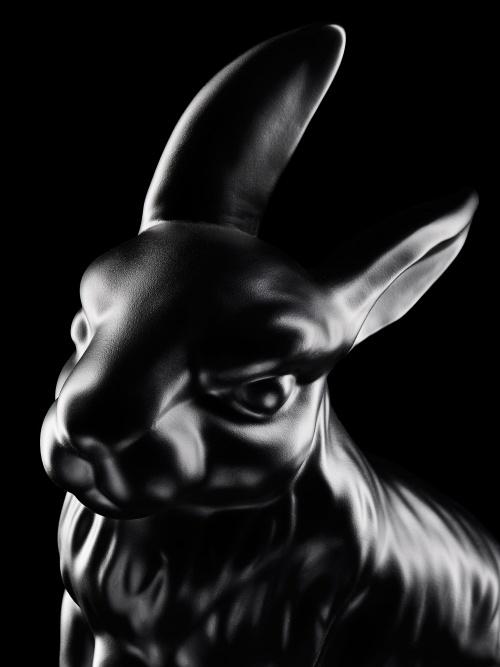 Rabbit Close Ipr