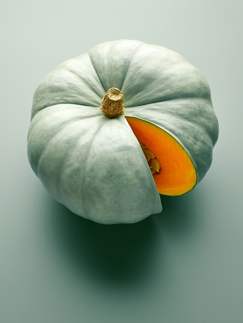 Crown prince pumpkin colin campbell