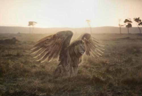 GL BFF Myths Lion