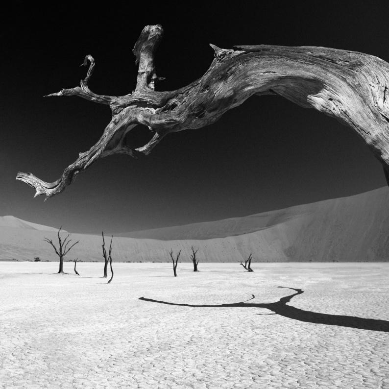 Dead Vlei IV Namibia